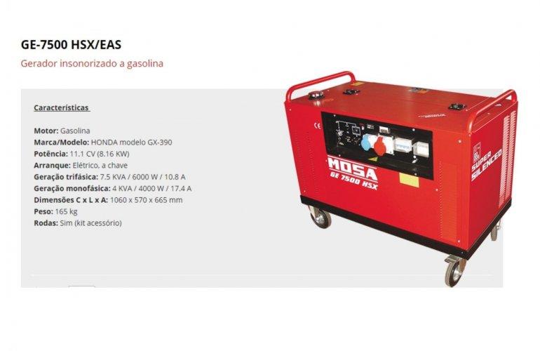 GE-6000 SX-GS AVR EAS